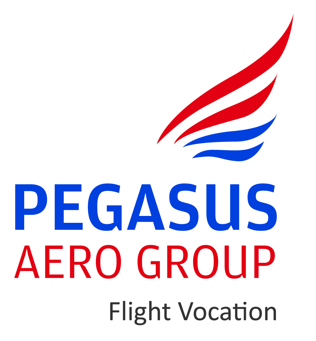 Pegasus Aero Group